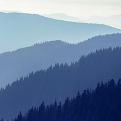 Гірські градієнти
