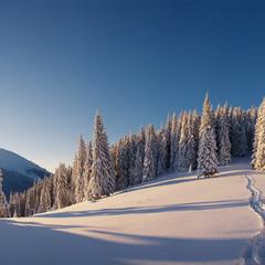 Снігами на Синяк