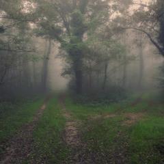 Таинственный путь!