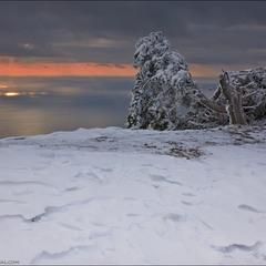 Январь на Ай-Петри