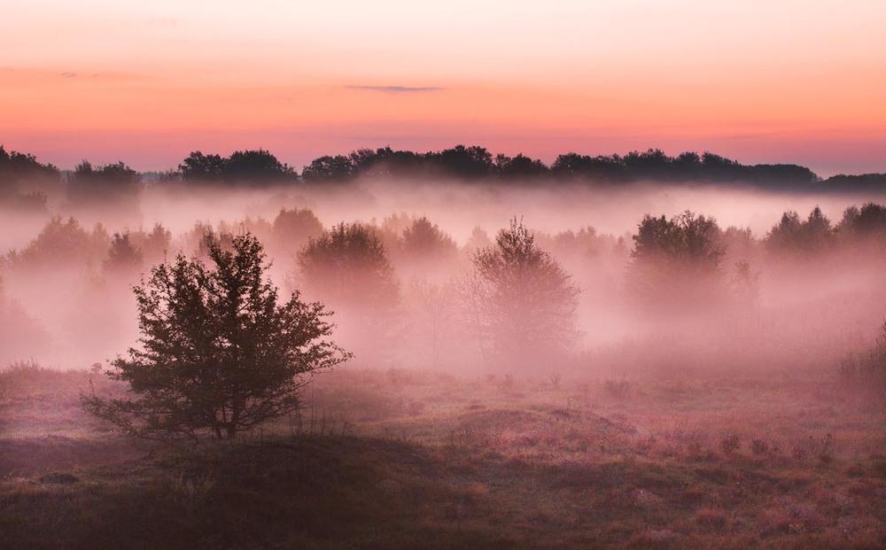 Красота тумана фото