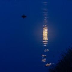 Місячна доріжка