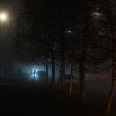 Было так тихо и так темно, что поневоле хотелось совершить преступление...