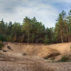 Кримський ліс-2