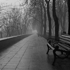 Утро, туман, тоска