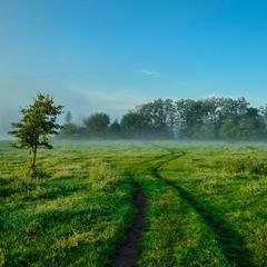 А прямо підеш - туман найдеш