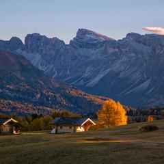 Осінь, гори, деревце...