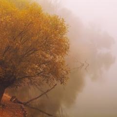 Осенняя пастель