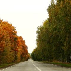 Осень против Лета.