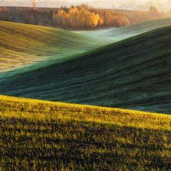 осіннє поле