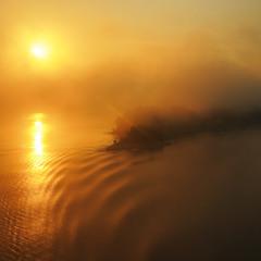 золотий світанок