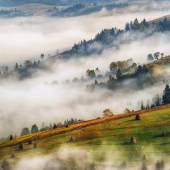 Карпатські тумани
