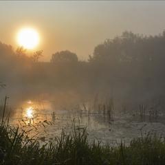 Случ просыпается, погружаясь в туман...