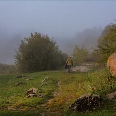 Идущий за туманом