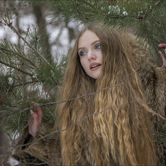 Милая девушка в волчьей шкуре... не встречали?
