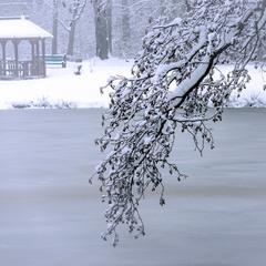 Мовчання зими 02