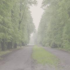 Мовчанка алей 01