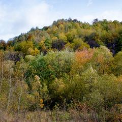 У Карпатах ходить осінь... 04
