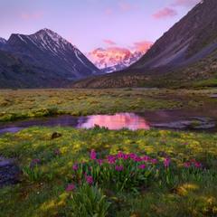 Рассвет с видом на Белуху