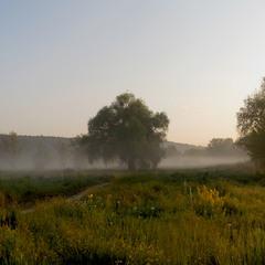 Придонецкие луга 2