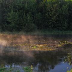 Островки тумана