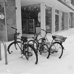 Из жизни велосипедов