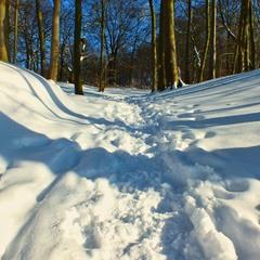 Шлях до зимової казки