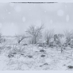 Снег летает и сверкает !