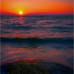 Яркие краски летнего Утра...