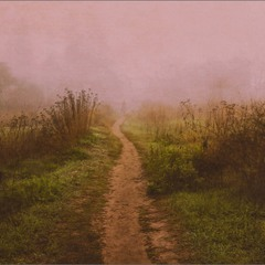 Утро -Туман...