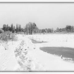 Настроение-Зима!