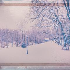 День последний января 2:)