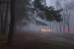 Седой туман сошел на город