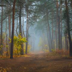 Магия голубого тумана