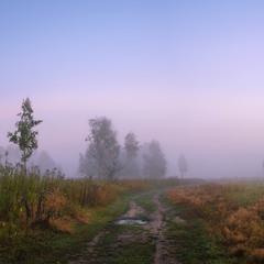 Туманная даль