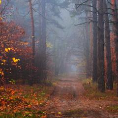 Бронзовая осень