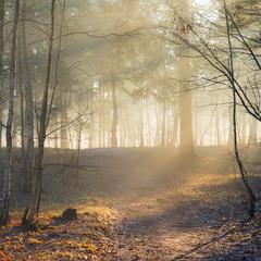 Прогоняя зиму лютую, наступили дни весенние