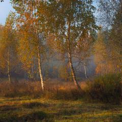 Туманное утро, октябрь