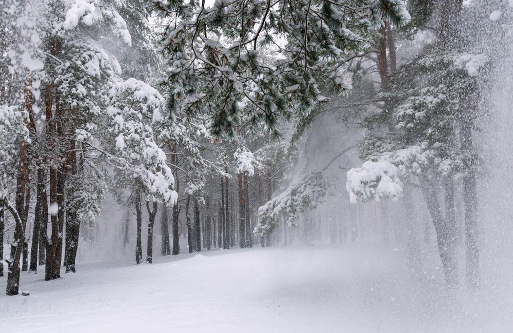 Днем, зима пришла картинки красивые