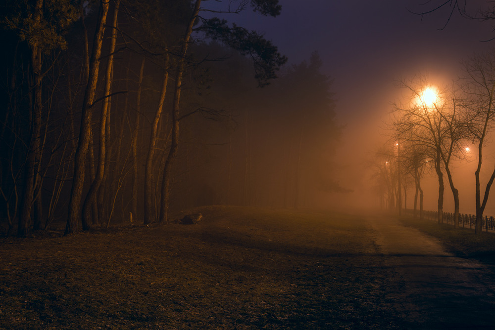 туман ночью картинки степной лесостепной