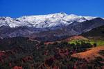 В спекотній Африці червона земля, випинаються білі гори, зелені ліси й смарагдові поля милують око.