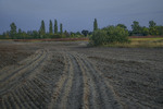 У полях край села пізно увечірі, соли сонце вже майже сховалося.