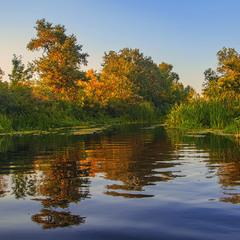 Це не осінь  розгоряється, це - вечір палає на річці Оріль.