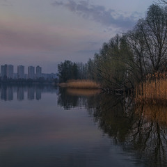 Сизий вечір оповив берег озера.