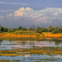 Над озером-болотом-солончаком накопичуються грозові хмари: до-о-о-о-о-бре - буде дощ.