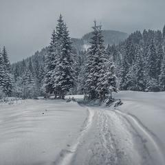 Вечір, сиплеться сніг.