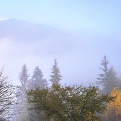 Тумани розступаються, буває, - от тоді й дійсність настає достеменніша.