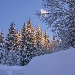 Кольорові зими ще трапляються під вечір буває.
