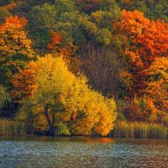 Жовтень-листопад барвисті біля води були.