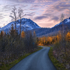 Весна прийшла у Високі Татри (по цій дорозі). А небо проти ночі якраз засвітилося було.